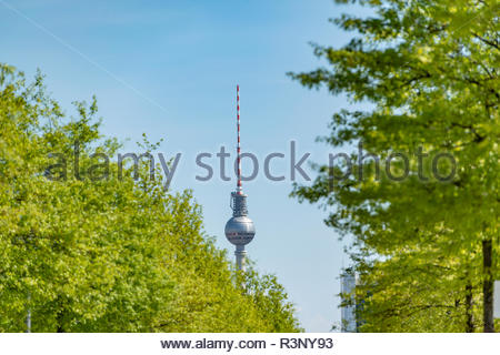 Fernsehturm in Berlin. Im Vordergrund befindet sich eine Allee - Stock Photo