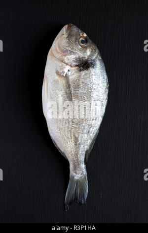 Fresh dorado fish over dark background, top view. Flat lay, overhead, from above. Close-up. - Stock Photo