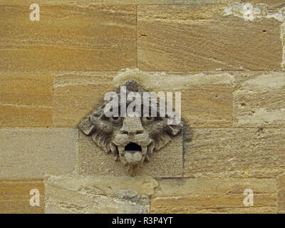 A weather worn or weather-beaten stone gargoyle or grotesque on the wall of a college in Oxford part of the university in sandstone or limestone - Stock Photo