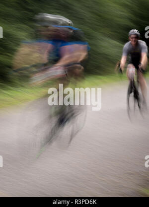Blur motion cyclists on a tree lined road - Stock Photo
