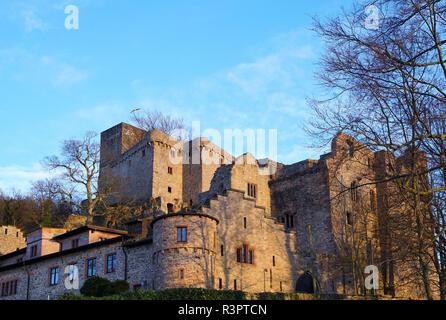 old castle in baden-baden