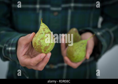 Man's hand holding pear, close-up - Stock Photo
