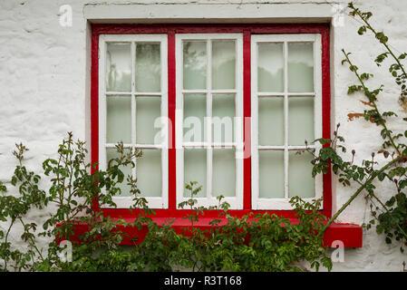 Ireland, County Limerick, Adare, Ireland's prettiest village, cottage details - Stock Photo