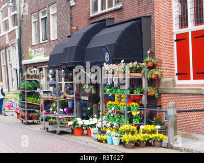 Netherlands, Monnickendam, Flower stand in the village of Monnickendam - Stock Photo