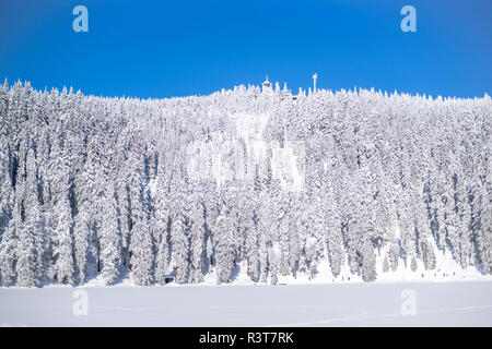 Germany, Baden-Wuerttemberg, winter landscape at Black forest near Mummelsee - Stock Photo