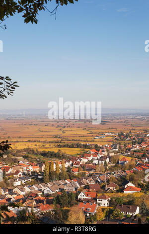 Germany,Rhineland-Palatinate, Pfalz, German Wine Route, wine village Gimmeldingen and autumn vineyards, Rhine Valley in distance - Stock Photo