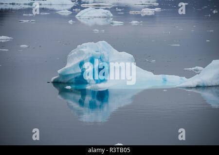 Greenland, Scoresbysund, aka Scoresby Sund, Fonfjord, Iceberg Alley. - Stock Photo