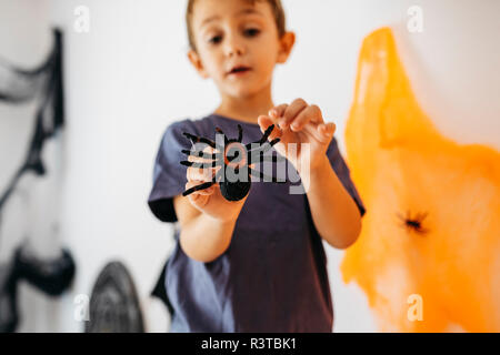 Little boy holding toy spider - Stock Photo