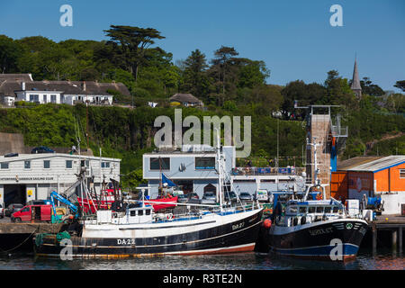 Ireland, County Waterford, Dunmore East, harbor view
