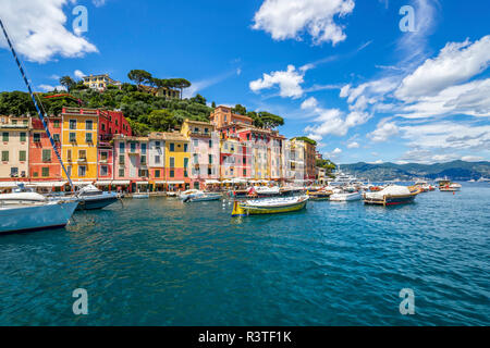 Italy, Liguria, Golfo del Tigullio, Portofino - Stock Photo