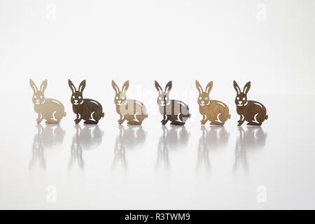 six rabbits from wood in a row with reflection - Stock Photo