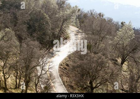 Road up Mt. Hamilton, Santa Clara County, California, USA - Stock Photo