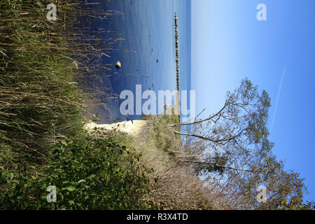 holiday island of poel with cliffs - Stock Photo
