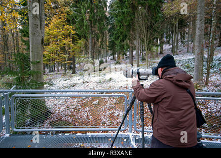 Nature photographer in wolf area, Bavarian Forest National Park,  Bayerischer Wald, Bavaria, Germany - Stock Photo