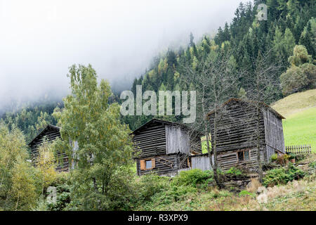 A wooden barn on the hill surrounded by fir forest. Old cottage on the mountain inside the cloud, natural environment. Hiking in the alps, Tirol, Aust - Stock Photo