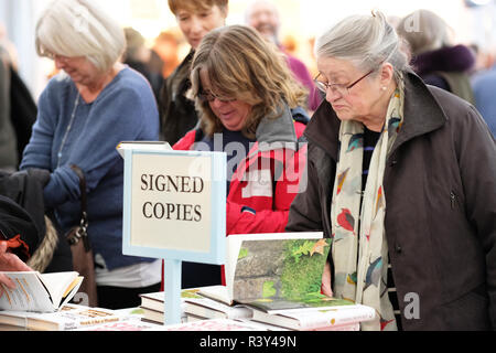Hay Festival Winter Weekend, Hay on Wye, Wales, UK - Saturday 24th November 2018 - Visitors browse the new books and signed copies in the Festival bookshop - this years Hay Festival Winter Weekend features over 40 events and sessions - Photo Steven May / Alamy Live News - Stock Photo