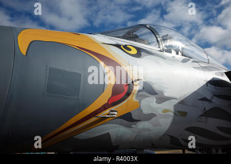 USA, Oregon, Hillsboro, F-15C Eagle in special livery for the 75th anniversary of the Oregon Air National Guard at Oregon International Airshow. - Stock Photo