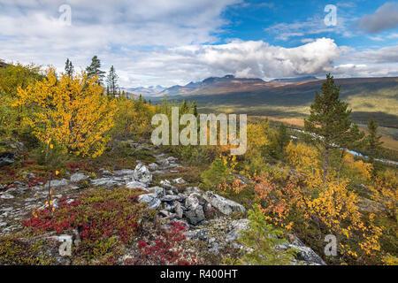 View to the mountains of Sarek National Park, autumn vegetation, Kvikkjokk, Laponia, Norrbotten, Lapland, Sweden - Stock Photo