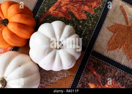 mini pumpkins on table - Stock Photo