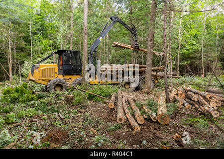 Log forwarder moving logs Reed Plantation, Reed, Maine. - Stock Photo