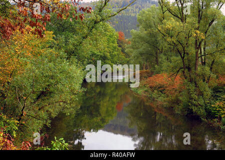 auwald in autumn at the ruhr in arnsberg - Stock Photo