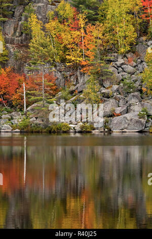 Adirondack Region, New York, USA. Fall foliage reflected in a pond. - Stock Photo