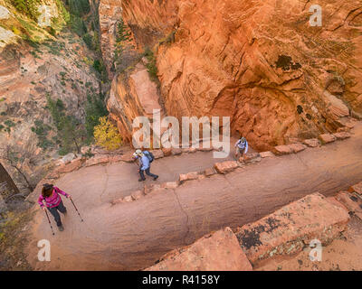 Utah, Zion National Park, Walter's Wiggles, on trail to Angels Landing - Stock Photo