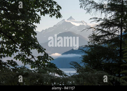 USA, Washington State. Mt. Shuksan framed by shoreline vegetation - Stock Photo