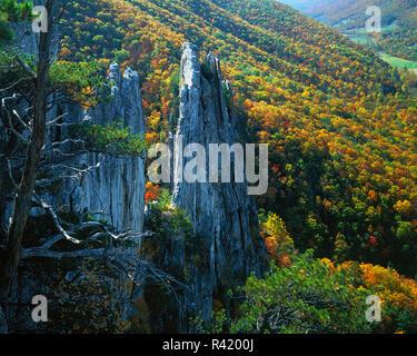USA, West Virginia, Monongahela National Forest, Spruce Knob-Seneca Rocks National Recreation Area, Seneca Rocks - Stock Photo