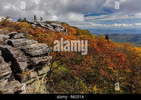 Bear Rocks in autumn in the Dolly Sods Wilderness, West Virginia, USA - Stock Photo