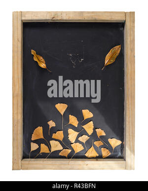 Fall composition blackboard autumn tree leaf retro - Stock Photo