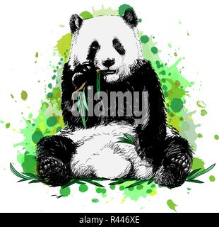 Panda sitting and eating bamboo from a splash of watercolor - Stock Photo