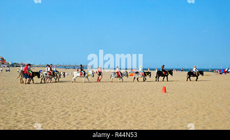 Donkey rides on Skegness Beach, Lincolnshire, UK - Stock Photo