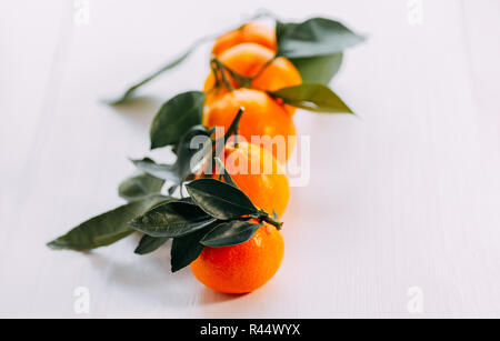 Five tangerines with green on a white background. Ripe orange fresh mandarin on a white background. - Stock Photo