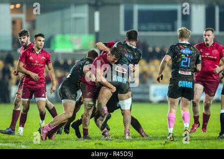 Parma, Italy. 25th November, 2018. Zebre's n8 Renato Giammarioli waits for support against Munster's defense in round 9th of Guinness PRO14 2018 2019©Massimiliano Carnabuci/Alamy Live news - Stock Photo