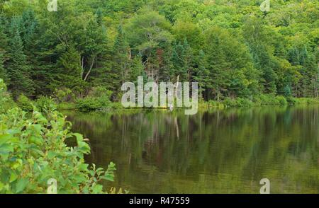 Crawford Notch State Park, NH, Hart's Location, New Hampshire. Quiet pond with mountains in background. Rugged wilderness and beauty in Northern, NH - Stock Photo