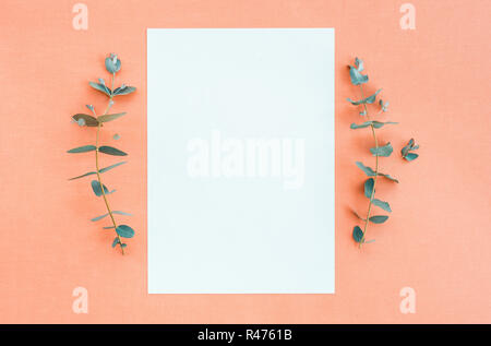 Eucalyptus branches and blank paper sheet with copy space, on peach canvas background. - Stock Photo