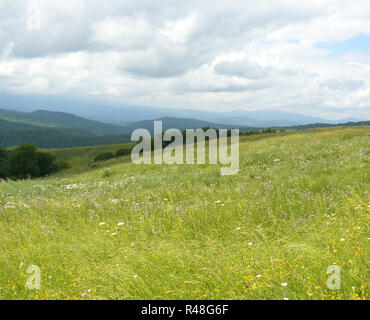 The blossoming meadows on slopes of hills. - Stock Photo
