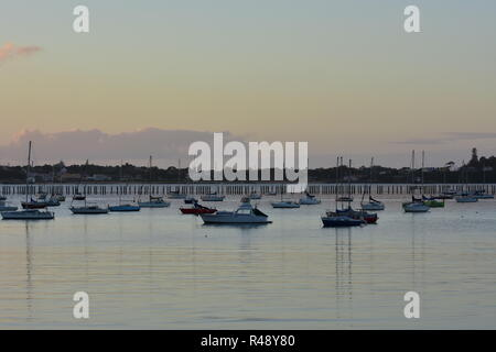 Sailboats on moorings in Okahu Bay in Auckland after sunset on calm day. - Stock Photo