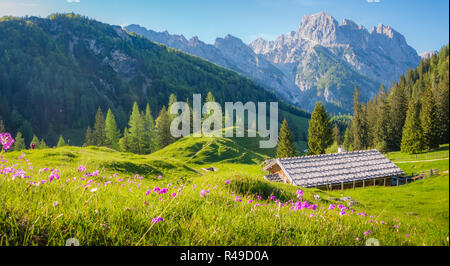 Idyllic landscape in the Alps with traditional mountain chalets and fresh green mountain pastures in summer - Stock Photo