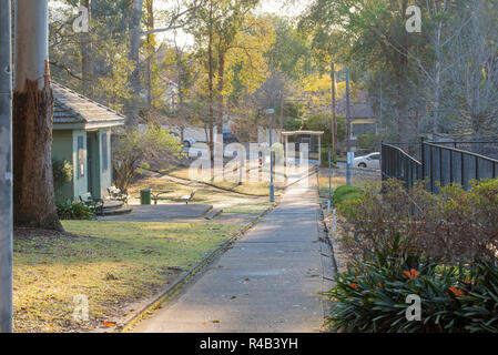 Morning sun filters through the gum trees and washes over the old club house change rooms and tennis courts in Werona Park, Gordon in Sydney - Stock Photo