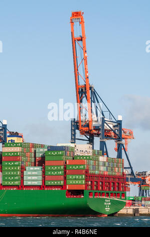 ROTTERDAM, THE NETHERLANDS - JANUARY 11, 2015: The ultra large container ship CSCL Globe from the China Shipping Line is moored at the Euromax Termina - Stock Photo
