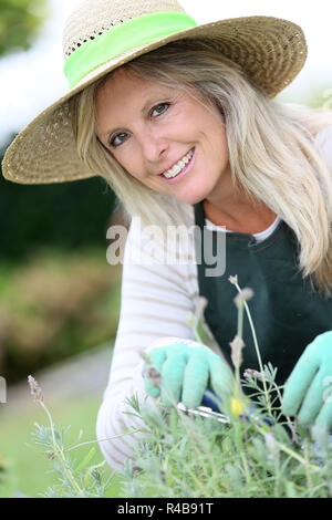Smiling woman with hat gardening aromatic plants - Stock Photo