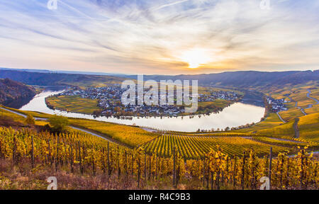 Piesport Moselschleife landscape in bright autumn colors - Stock Photo