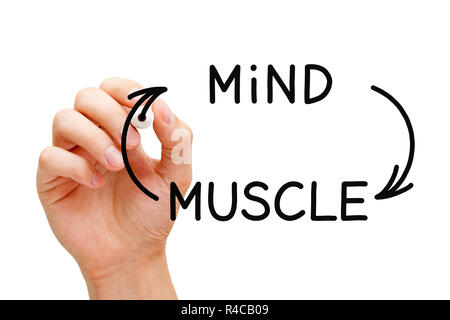 Hand drawing Mind-Muscle connection concept with black marker on transparent wipe board isolated on white. - Stock Photo
