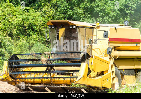 Combine harvester on a soy field - Stock Photo