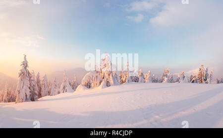 Fantastic orange winter landscape in snowy mountains glowing by sunlight. Dramatic wintry scene with snowy trees. Christmas holiday concept. - Stock Photo