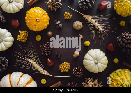 Autumn Collection on Brown Table with Red Jasper, Wheat, Heirloom Gourds, Acorns, Pinecones, Dried Artichokes and Cinnamon - Stock Photo