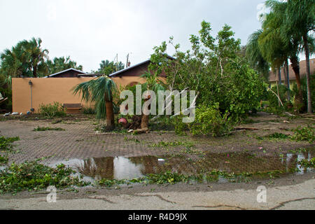 View of flooding, downed trees and property damage after hurricane irma in florida. - Stock Photo