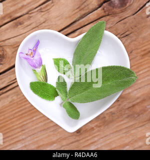 homeopathy and cooking with medicinal herbs,sage - Stock Photo